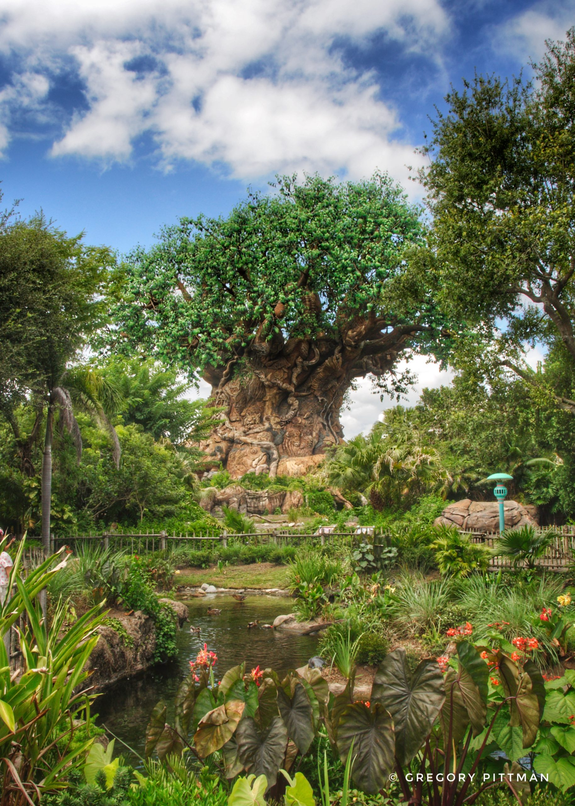 Tree of Life, Disney's Animal Kingdom theme park